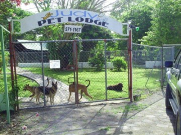 Judy's Pet Lodge